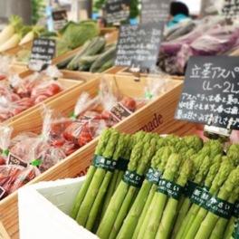 街彩マルシェ~道産野菜のおいしいマルシェ~VOL.2