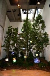 モニターを使用した立体作品「ケージの森/森の啓示」などを展示