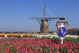 広場のシンボルとなっているオランダ風車「リーフデ」