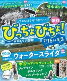 今年はさらに広~い「無料!水のエリア登場!!」
