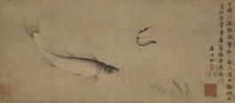 特集展示 京都水族館連携企画 京博すいぞくかん-どんなおさかないるのかな?