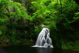岩を伝って落水する様が美しい千手滝