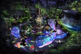 チームラボ 宇部市ときわ公園 2017 世界を旅する植物に住まう生き物たち