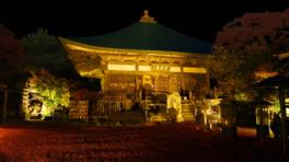 大分県屈指の紅葉スポットとしても有名な両子寺