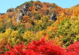 秋には錦絵を思わせるほど鮮やかに色付く木々が岩山を覆う