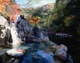 【紅葉・見頃】湯西川温泉