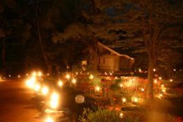 竹灯籠のやわらかな光に包まれる