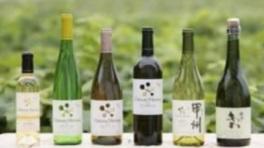 日本ワインとシャトー・メルシャンの魅力を知る企画