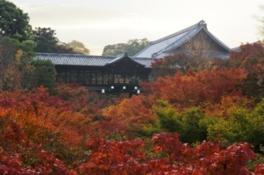 紅葉シーズンには色鮮やかな景観が広がる