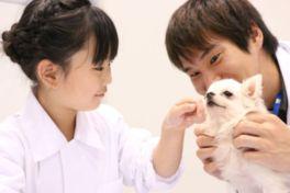 子供に人気の「1日獣医体験コーナー」では、白衣を着て聴診器でペットの心音を聞くことができる他、白衣姿で記念写真の撮影も可能