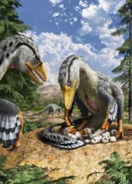 羽毛恐竜「トロオドン」の巣の様子
