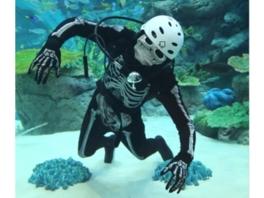 仮装したダイバーが水中から楽しく魚の解説をしてくれる