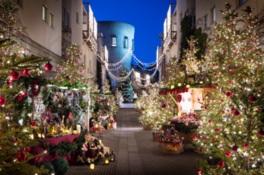 ピーマン通りの八ヶ岳クリスマスマルシェもイルミで彩られる