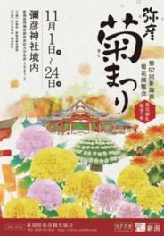様々な菊花が堪能できる展覧会