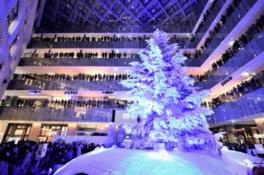 真っ白なクリスマスツリーがライトアップされる