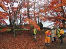 赤や黄色に染まった木々たちに包まれながら、深まる秋を満喫