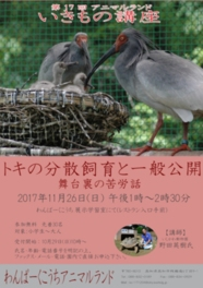 佐渡トキ保護センターで飼育されているトキが感染症で絶滅するのを防ぐのが分散飼育の目的