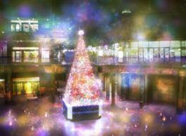 幻想的で美しいクリスマスツリーが登場