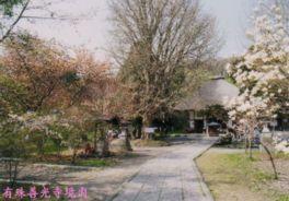 【桜・見頃】有珠善光寺自然公園