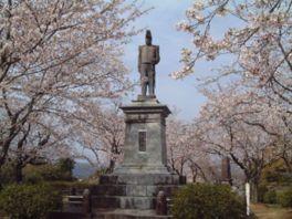 【桜・見頃】延岡城跡公園