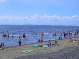 清掃が徹底されているきれいな砂浜が続く
