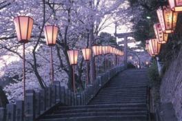 金崎宮(金ヶ崎公園)
