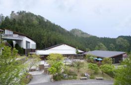 森林や小川の近い高環境で芸術鑑賞