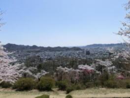 展望台から見た桐生の市街地