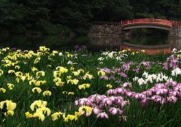 香川県立 亀鶴公園
