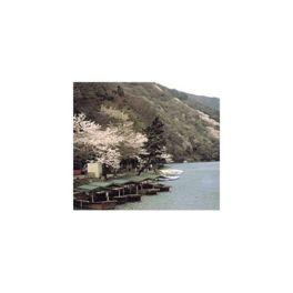 桂川の美しい自然を満喫