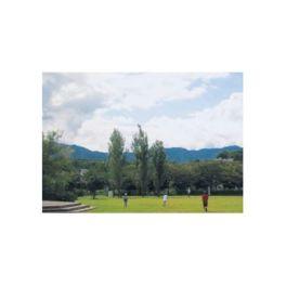 都市公園湖岸緑地