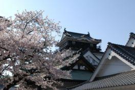 徳川家康の居城「岡崎城」の城跡