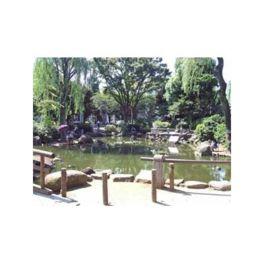 新井薬師公園池