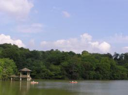 園内の琵琶ヶ池ではボートに乗ることができる