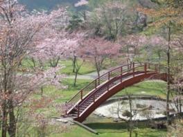 春の桜まつりなどイベント会場としても利用されている