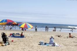 穏やかな波が打ち寄せる広々としたビーチ