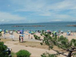白い砂浜と豊かな緑に囲まれた最高のロケーション