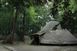 屋外に竪穴式住居を再現