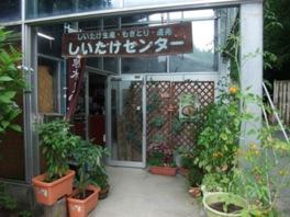 園内では乾シイタケ(60g500円)などの販売も行っている