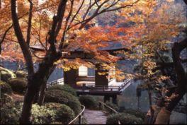 池に浮かぶ建物、鳶魚閣(えんぎょかく)の造形美も趣深い
