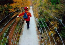 歩道が整備されており滝が眺望できる場所まで安全に行ける