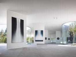 自然の光が差し込み、明るく開放的な展示空間