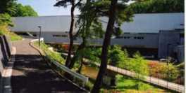 建物の奥には台原森林公園が広がっており敷地内の散策も楽しめる