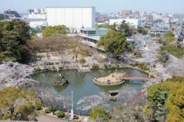 園内には約250本の桜の木があり、シーズン中は夜桜見物も楽しめる