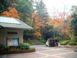 長等公園の自然に囲まれた美術館