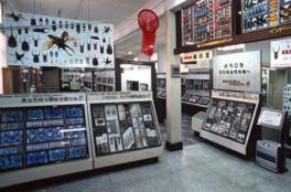 世界のカブトムシやクワガタ、岐阜市近郊のチョウなどを展示