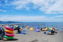 波が穏やかで千葉県内有数の透明度を誇る