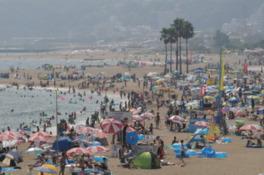 たくさんの人が集まる活気のあるビーチ