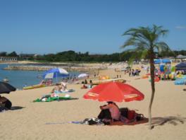 青く澄んだ海辺には多くの海水浴客が集う