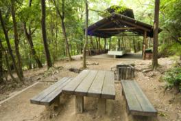 深坂自然の森キャンプ場